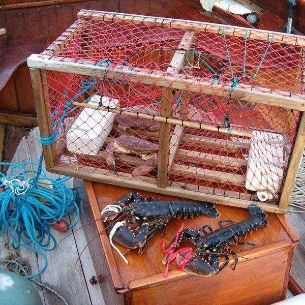 fisketur-sqare-600p